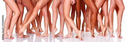 Legs - 13584993
