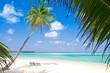 Tropischer einsamer Strand mit kristallblauem Wasser