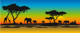 Fototapety Afrikanische Landschaft