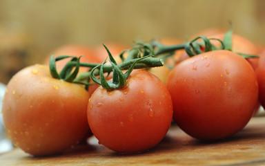 Rote Tomaten in der Küche