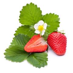 Ganze und halbe Erdbeere mit Blättern und Blüte