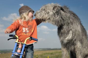 Kleinkind auf Laufrad wird beschnuppert von Irish Wolfhound