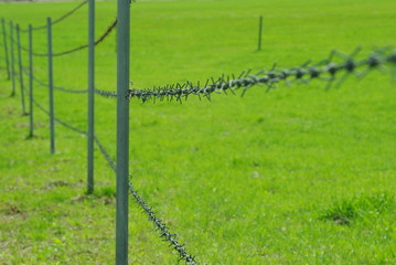 牧場の有刺鉄線