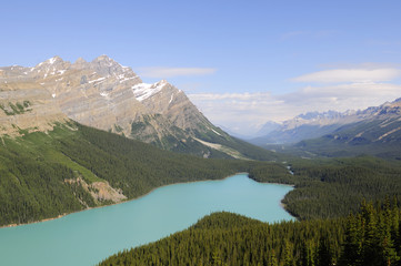 Peyto Lake at Banff National Park in summer time