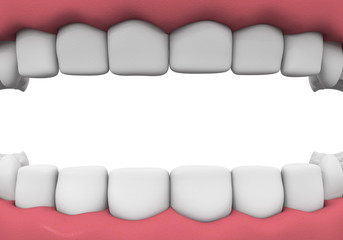 Denture close-up