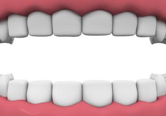 Denture close-up