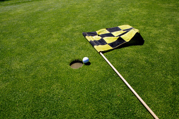 Golf green with hole and flag.