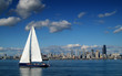 Seattle Skyline with Sailboat - 13669907