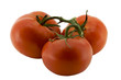 Three tomatoes on the vine b