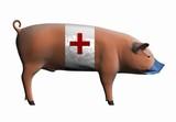 swine flu pandemic concept poster