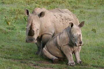 proteccion materna