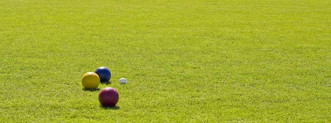 Balls on Green Grass