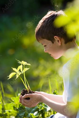 nature protégée 1 - 13686579