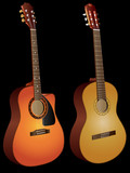 Vector isolated acoustic guitars