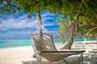 canvas print picture - Hängematte unter Palmen am Strand