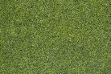 Golf grass texure