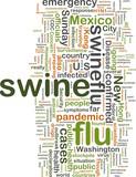 Swine flu wordcloud poster