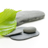 nature concept, green leaf and stones on white background
