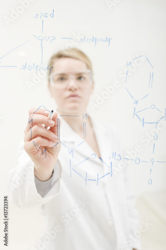 Working Scientist