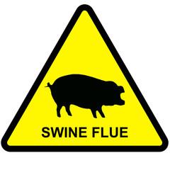 swineflue
