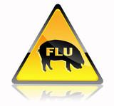 Swine flu icon poster