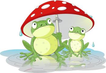 Two frogs wearing rain gear under  mushroom