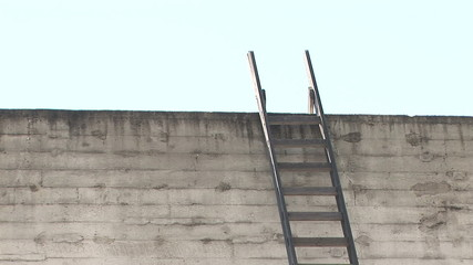 Ladder on a Wall
