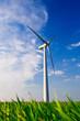 Windrad auf grüner Weide 2