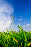 Windrad auf grüner Weide