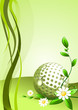 Abstract golf Background ( vector illustration )