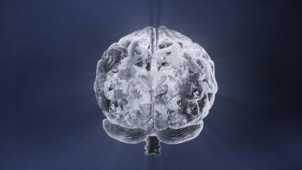 Rotating,crystal-like human brain. HD 1080p loop.