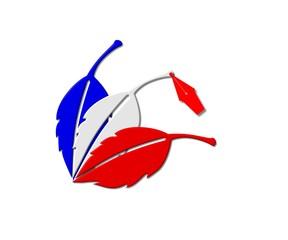 Le vote des français