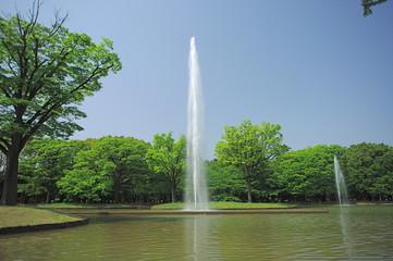 代々木公園の噴水