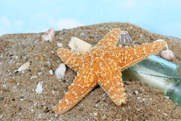 Starfish Climbing Bottle with Note in Wet Sand