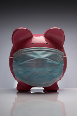 Swine flu pig with mask