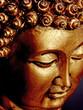 bouddha sur un fond noir