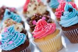 Fototapety Cupcake assortment