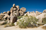 Joshua Tree national Park, Felsenformation beim Hidden Valley poster