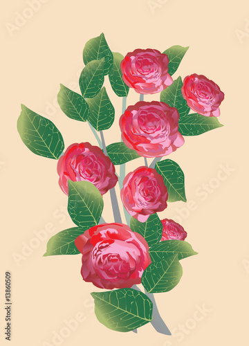 seven red rose bouquet
