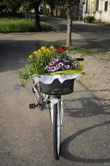 Bicicletta con cestino di fiori - Laipacco Friuli