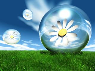 fleurs en bulle et herbe