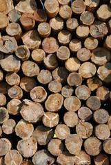 huddle of wood