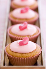 Row of pink cupcakes