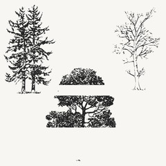 vector trees...