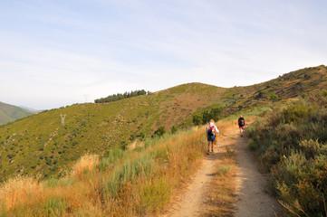 Pilgrims along Camino de Santiago