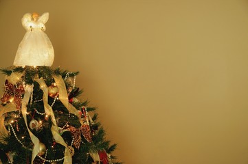 The top of a Christmas tree