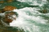 Rapids in river poster