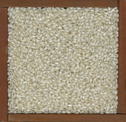 arborio rice background
