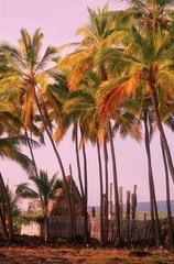Pu'uhonua o Honaunau National Historical Park in Hawaii, USA