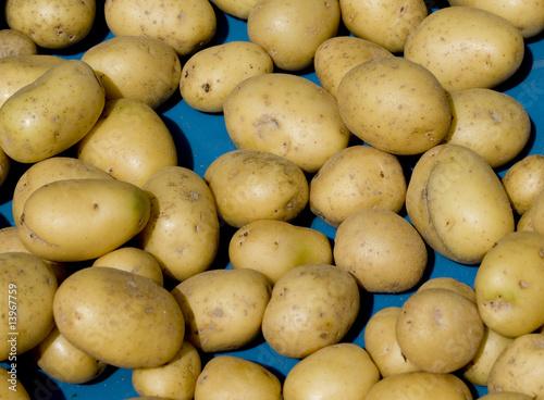 Kartoffeln auf dem Wochenmarkt